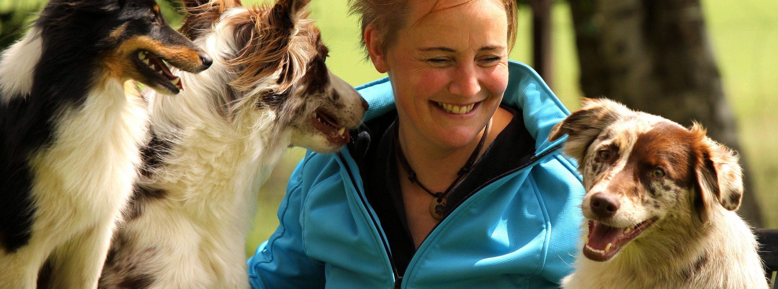 Agility Seminar im Hundesporthotel Wolf mit Stephanie La Motte