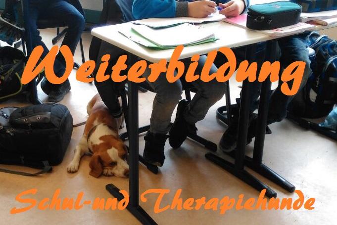 Weiterbildung: Schul- und Therapiehunde