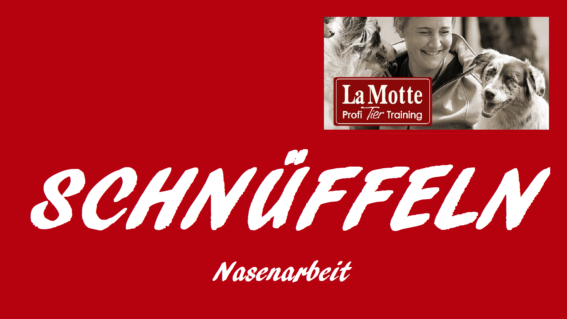Schnüffel Workshop (3-teilig) mit Stephanie Harms