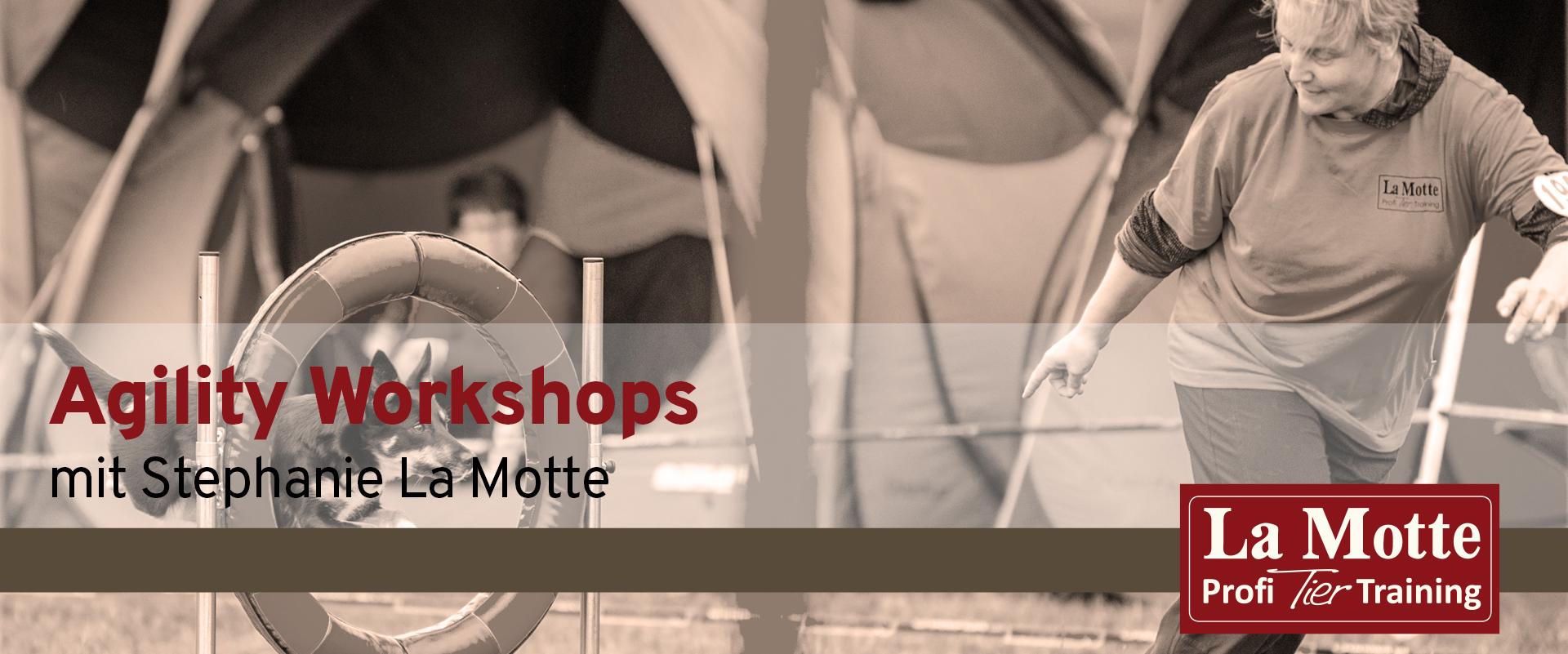 Agility Workshops mit Stephanie La Motte - Teil 2